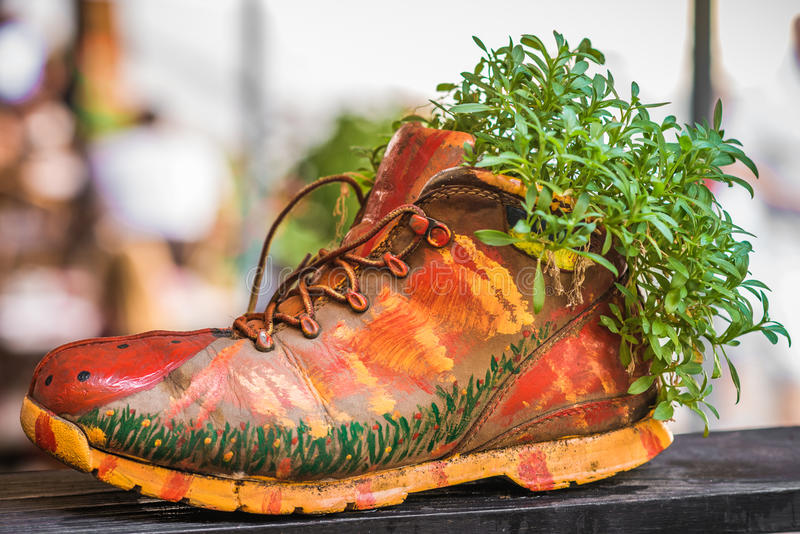Plantas que crecen en zapato pintado imágenes de archivo libres de regalías
