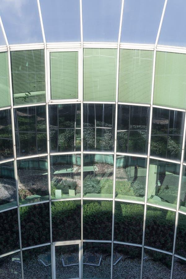 Plantas reflectoras de la fachada de cristal del edificio y cielo azul foto de archivo