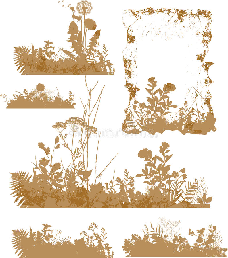 Plantas, Silhueta Foto de Stock