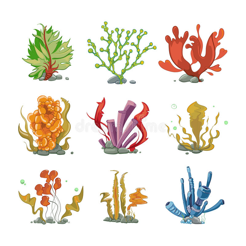 Plantas subacuáticas en estilo del vector de la historieta ilustración del vector