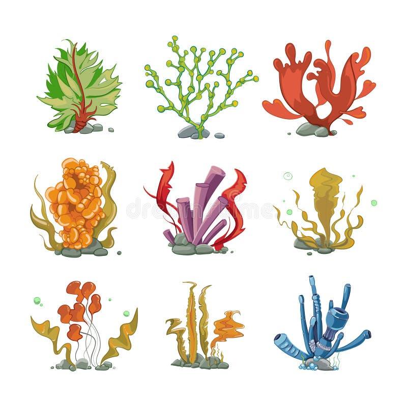Plantas subaquáticas no estilo do vetor dos desenhos animados ilustração do vetor