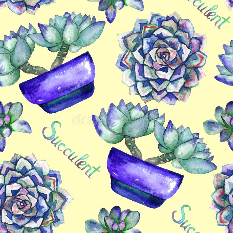 Plantas suculentos no potenciômetro azul e na vista superior, fundo amarelo macio ilustração royalty free