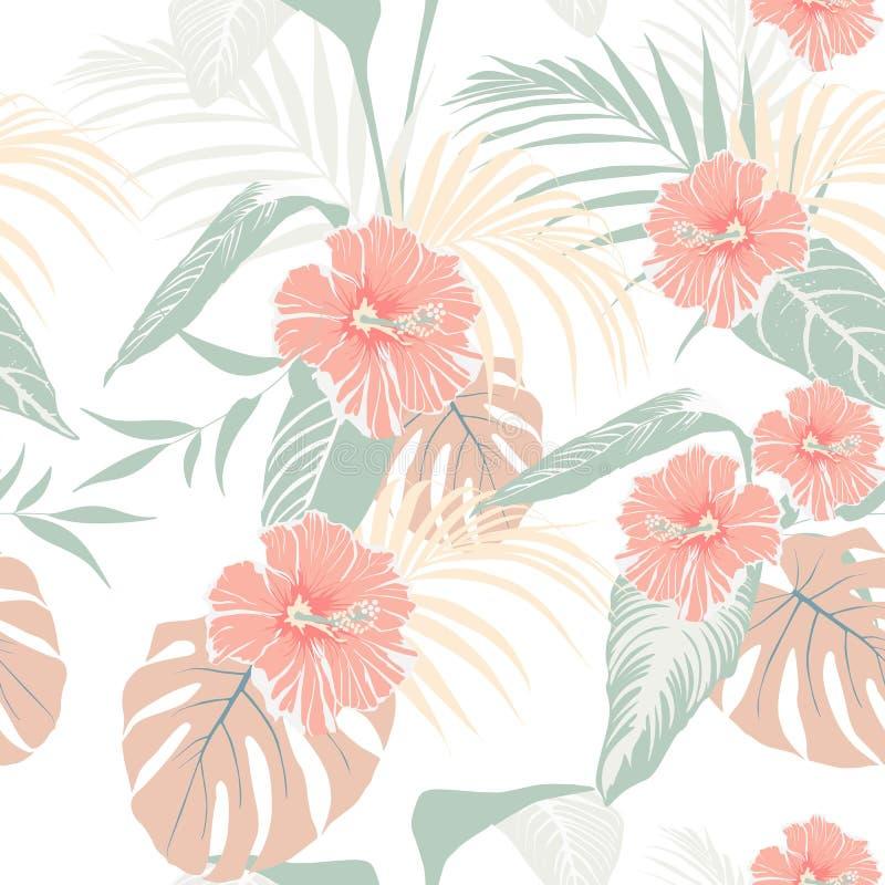 Plantas tropicais e flores pasteis do hibiscus Teste padrão tropical sem emenda, fundo ilustração stock