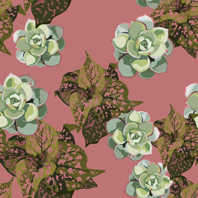Plantas tropicais exóticas da selva Teste padrão tropical do vetor sem emenda com as plantas tropicais com pontos cor-de-rosa e p ilustração do vetor