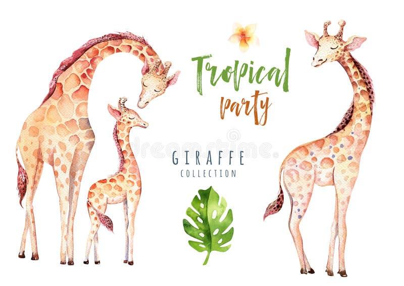 Plantas tropicales dibujadas mano de la acuarela fijadas y jirafa Hojas de palma exóticas, árbol de la selva, elementos tropicale stock de ilustración