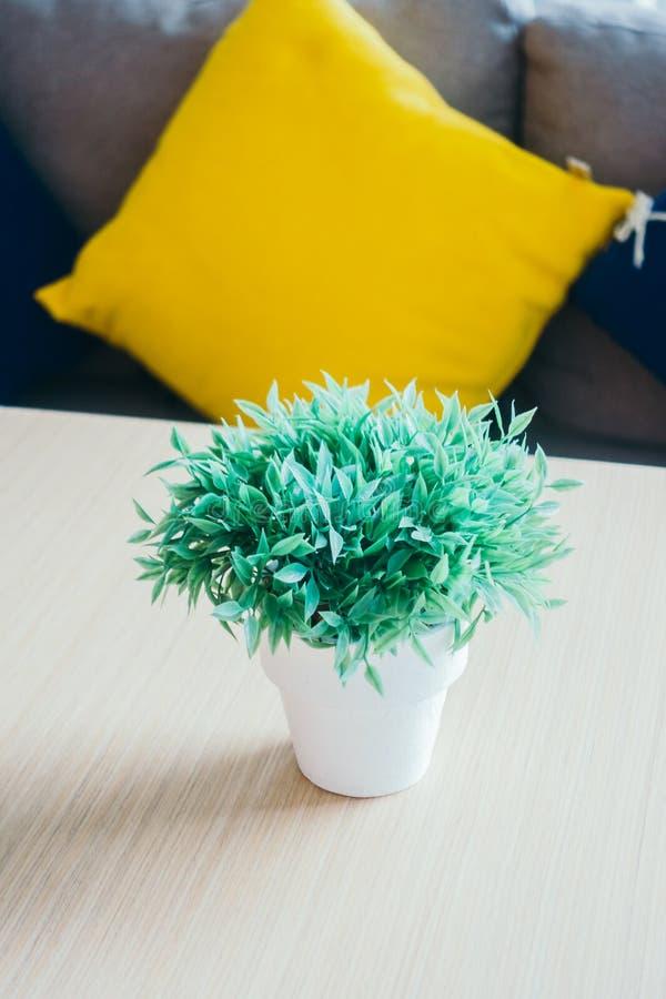 Plantas verdes del florero imagen de archivo