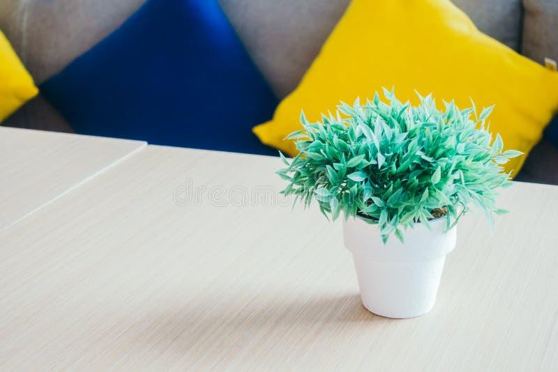 Plantas verdes del florero foto de archivo