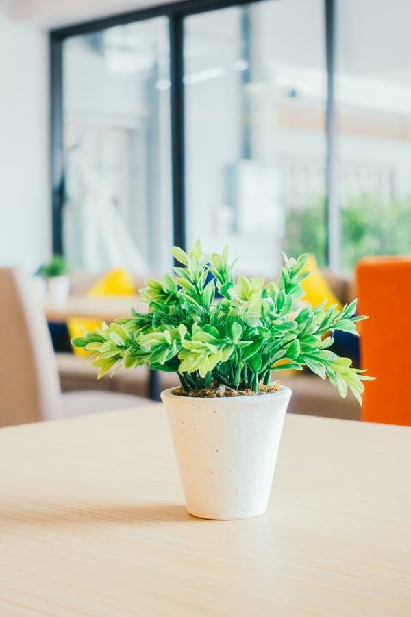 Plantas verdes del florero fotografía de archivo libre de regalías
