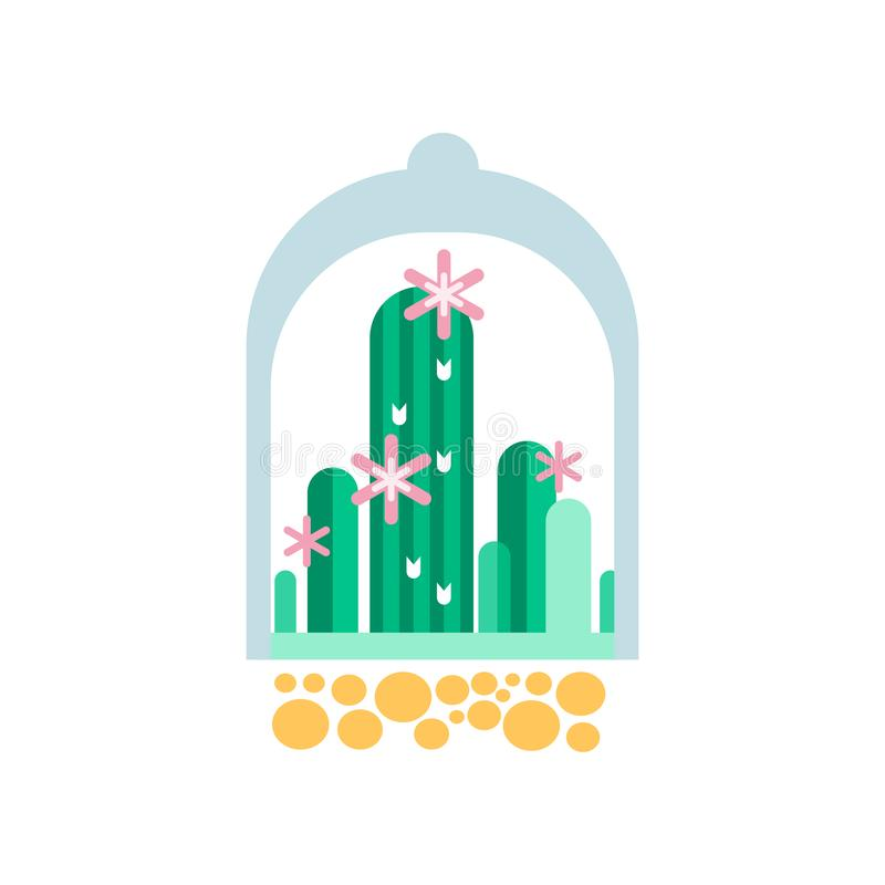 Plantas verdes do cacto com as flores cor-de-rosa sob a abóbada transparente Ícone liso do vetor das plantas carnudas home no flo ilustração royalty free
