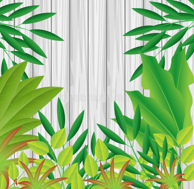 Plantas verdes en una textura de madera del fondo stock de ilustración