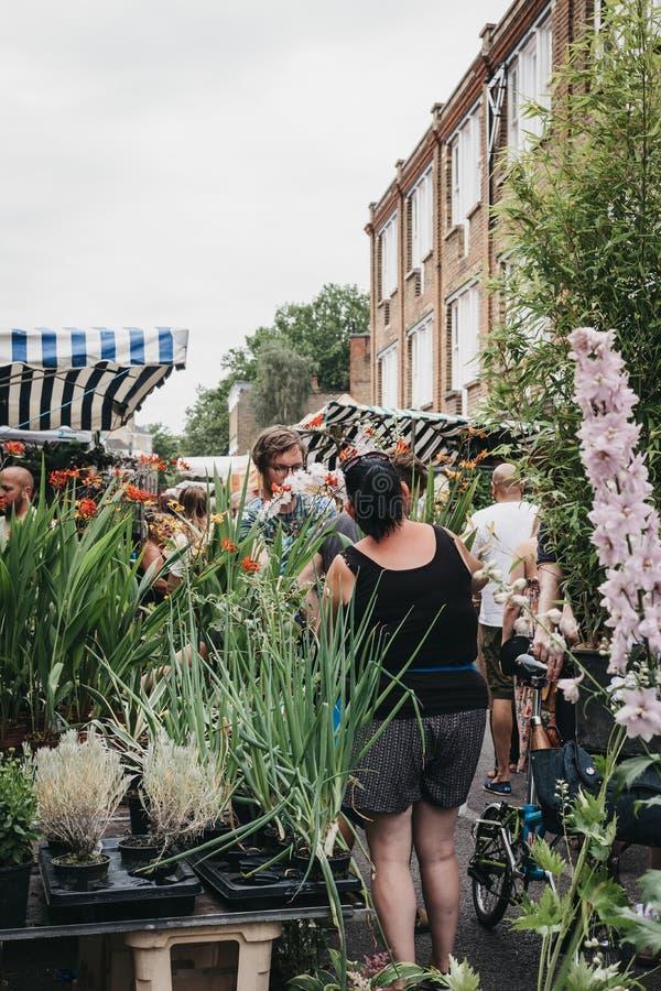 Plantas y flores de compra de la gente en el mercado de la flor del camino de Columbia, Londres, Reino Unido imagen de archivo