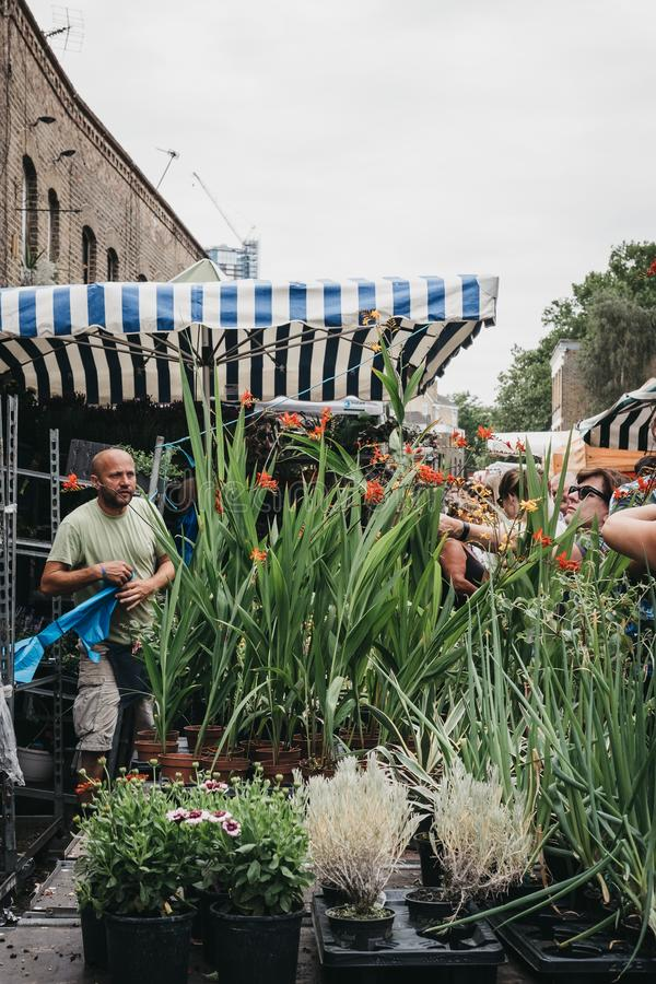 Plantas y flores de compra de la gente en el mercado de la flor del camino de Columbia, Londres, Reino Unido fotografía de archivo