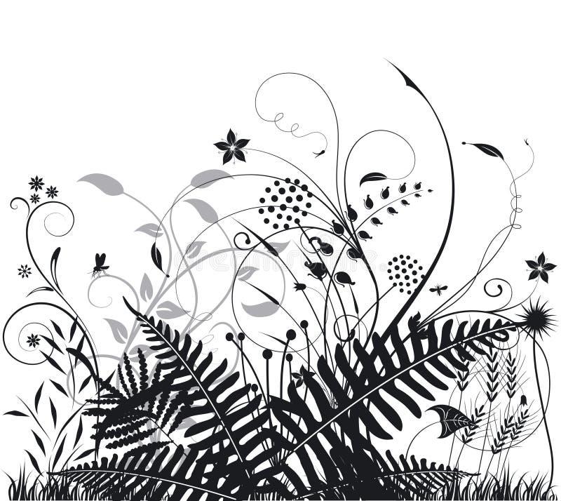 Plantas y helechos stock de ilustración