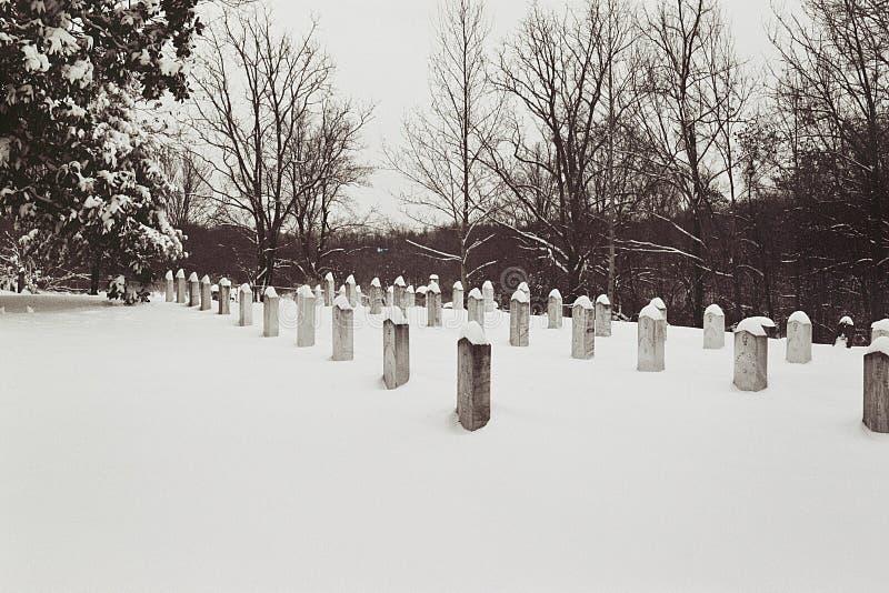 Plantation confédérée de cèdre de tombes image libre de droits