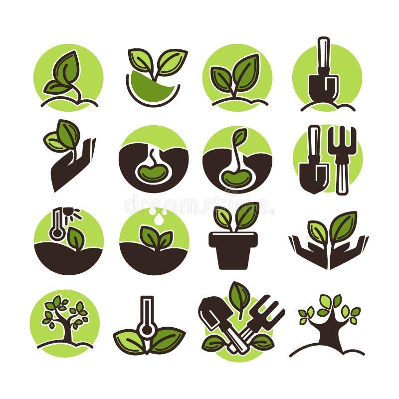 Plantation d'arbres et icônes de jardinage de vecteur d'horticulture de vert réglées illustration de vecteur