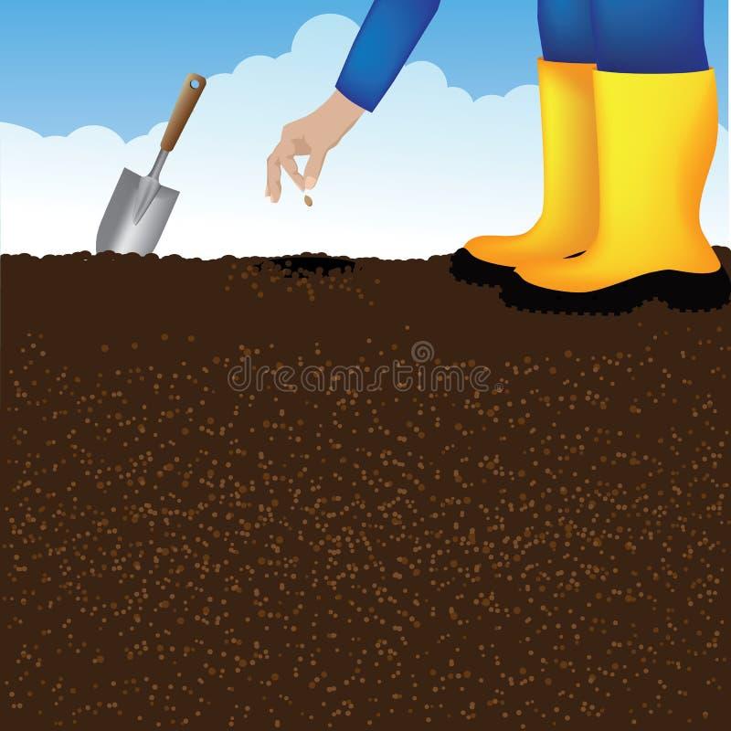 Plantation d'une graine à un arrière-plan de potager illustration libre de droits