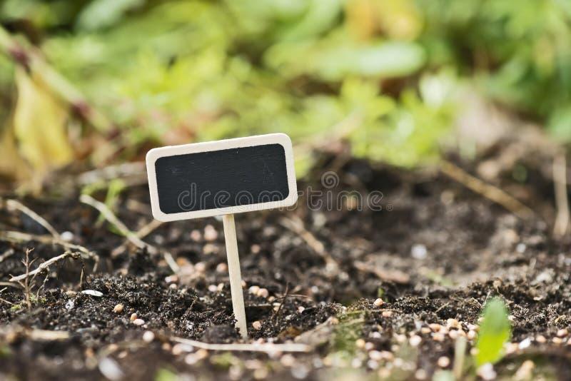 Plantation dans le jardin images libres de droits