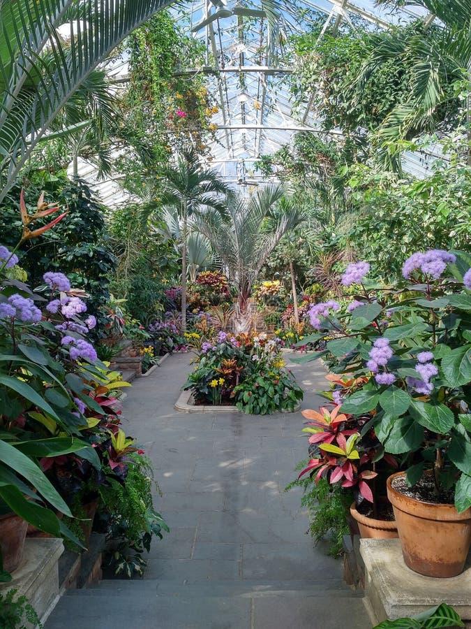 Plantation des champs arborétum, le Long Island photos stock
