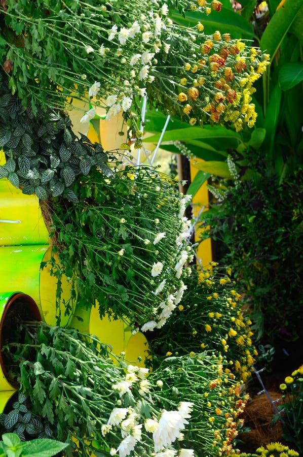 Plantation des fleurs et des l gumes en tant que jardin for Plantation de fleurs