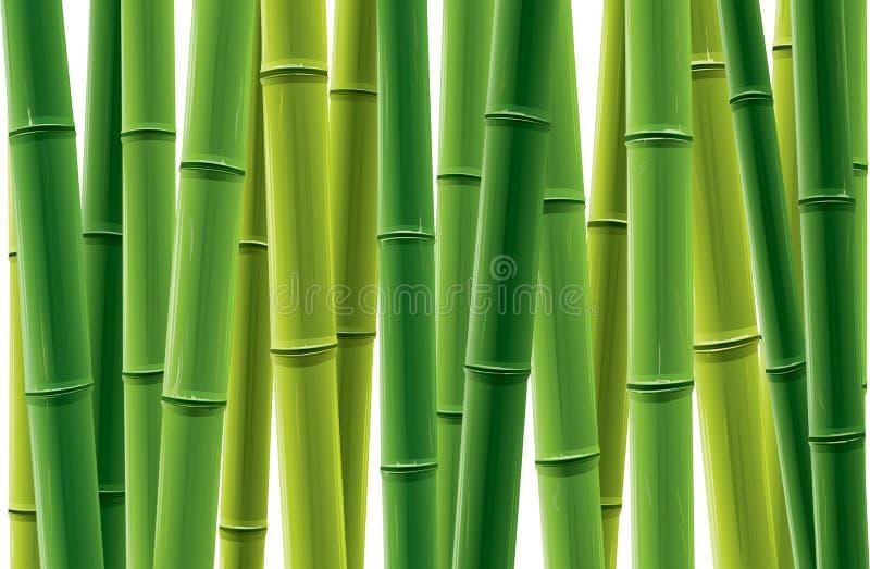 Plantation en bambou illustration de vecteur