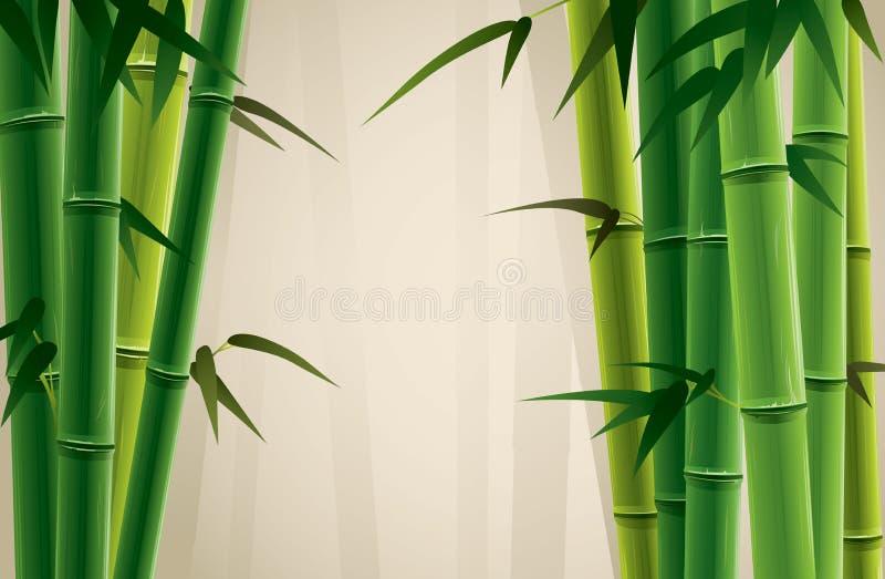Plantation en bambou illustration libre de droits