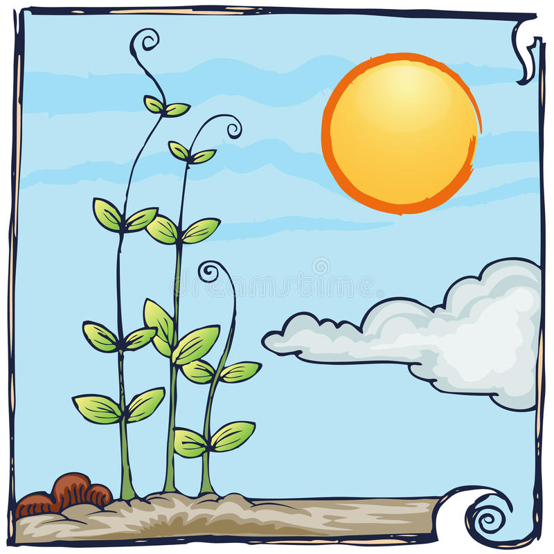 Line Drawing Sunny Day : Plantation hand draw on sunny day royalty free stock photo
