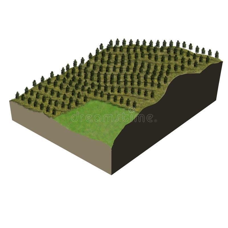 Plantation modèle d'arbre de terrain illustration de vecteur