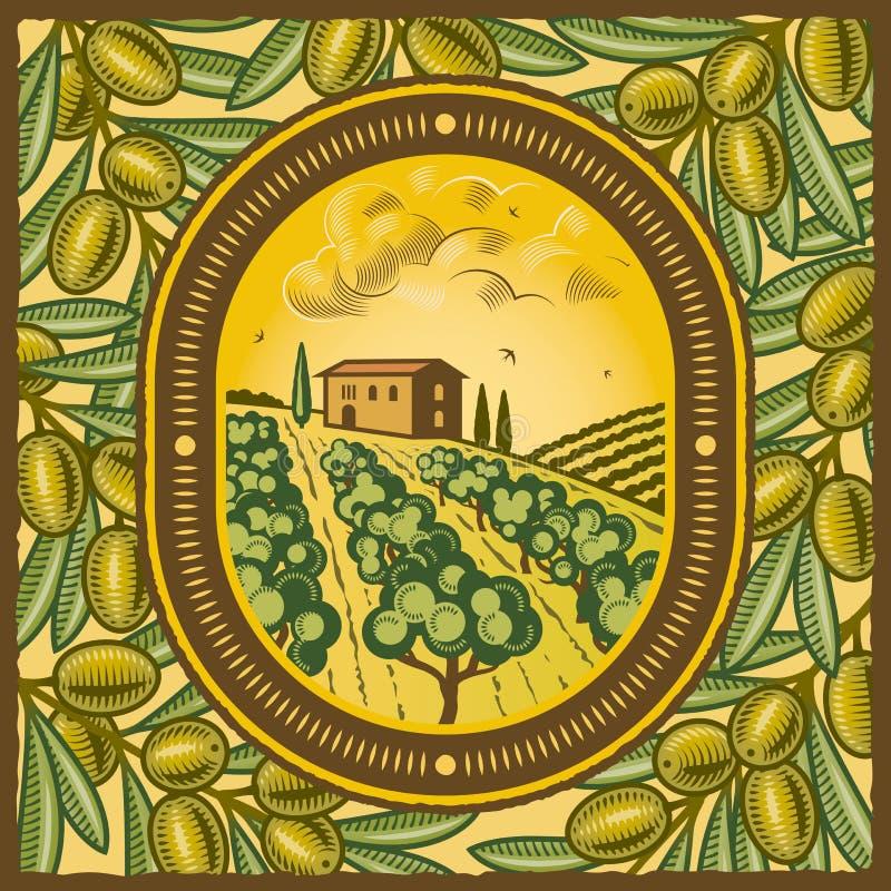 Plantation olive illustration de vecteur