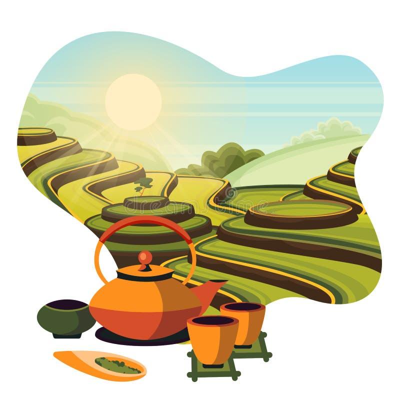 Plantation verte de champs de terrasse de thé de la Chine Cérémonie de thé japonaise, illustration de bande dessinée de vecteur illustration de vecteur
