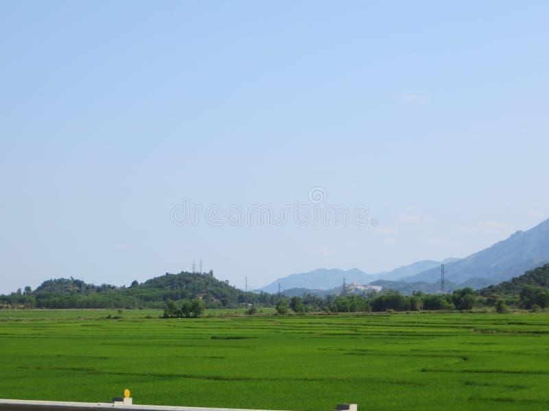 Plantations de riz dans les montagnes photos stock