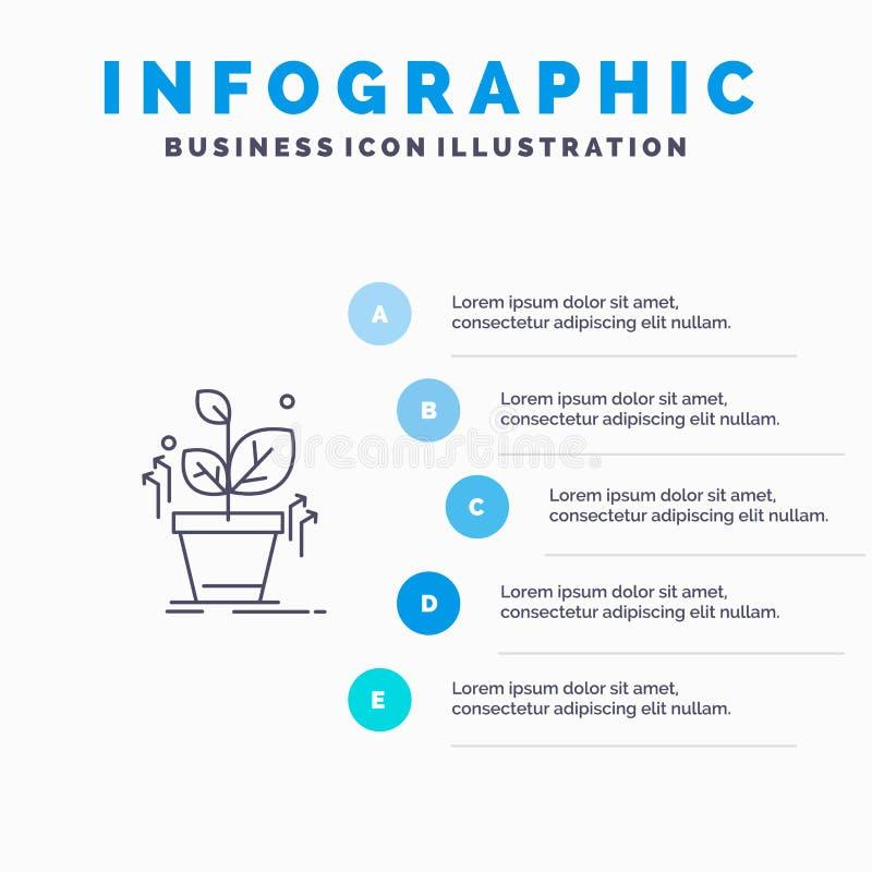 Plante, crezca, crecido, línea icono del éxito con el fondo del infographics de la presentación de 5 pasos stock de ilustración