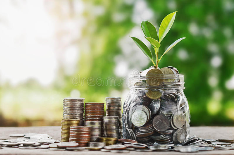 Plante las monedas crecientes en el tarro de cristal con concentrado financiero de la inversión fotos de archivo libres de regalías