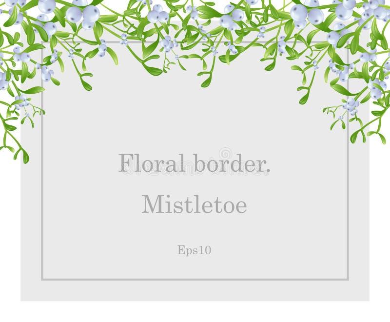 Plante médicinale de gui D?cor de No?l Vue avec des feuilles et des baies Vecteur d'ENV 10 photographie stock