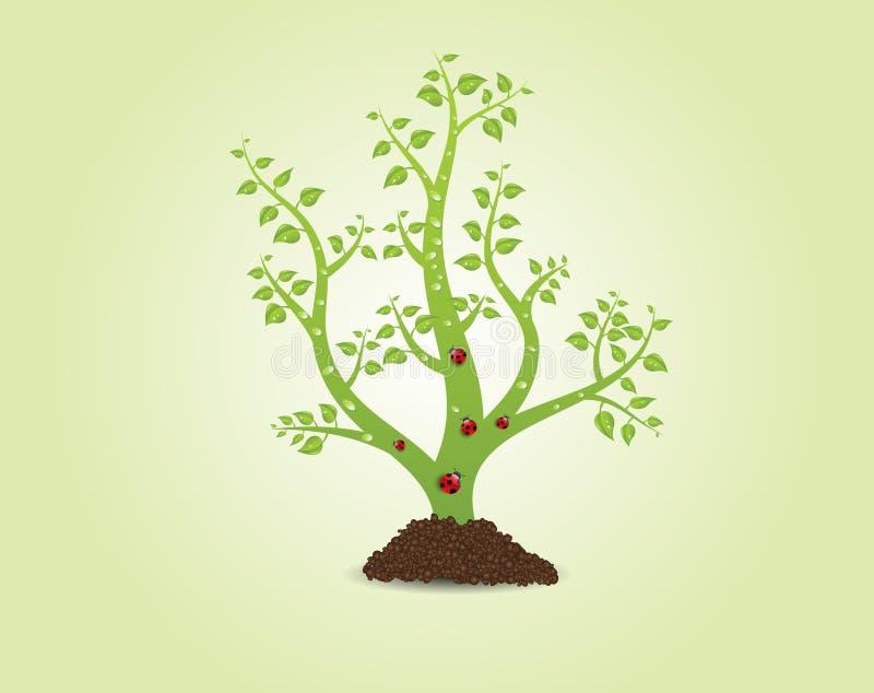 Plante verte avec des lames illustration libre de droits