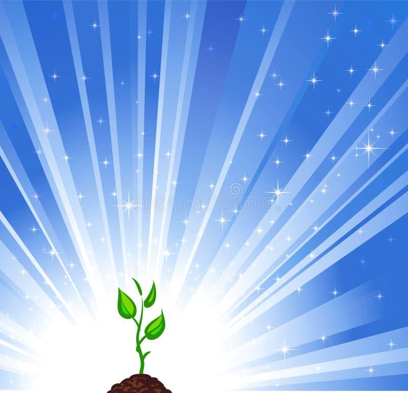 Plante verte croissante illustration stock