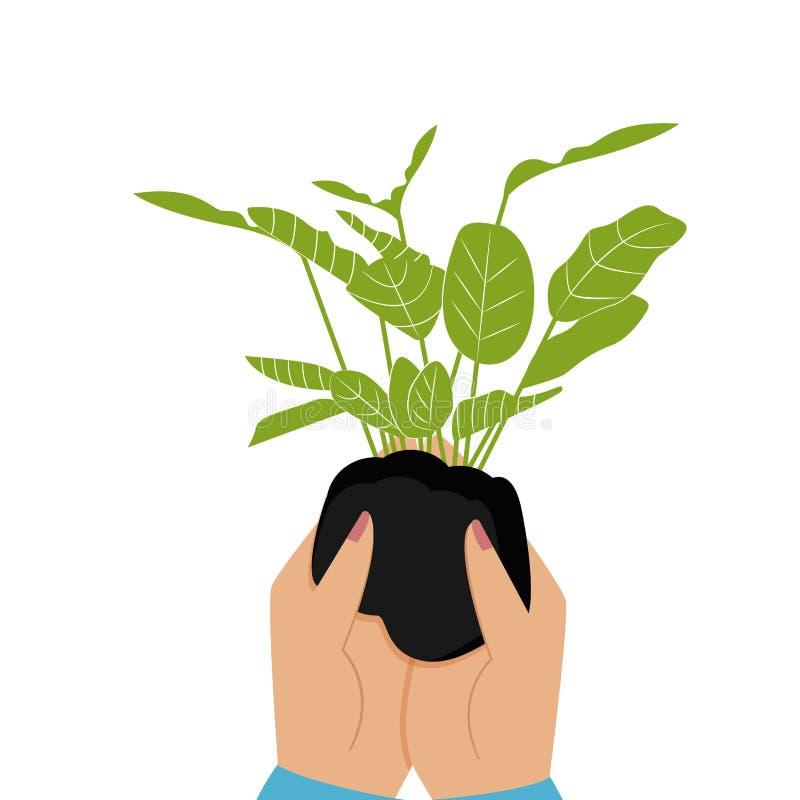 plante verte de main Illustration de vecteur d'un style plat illustration libre de droits