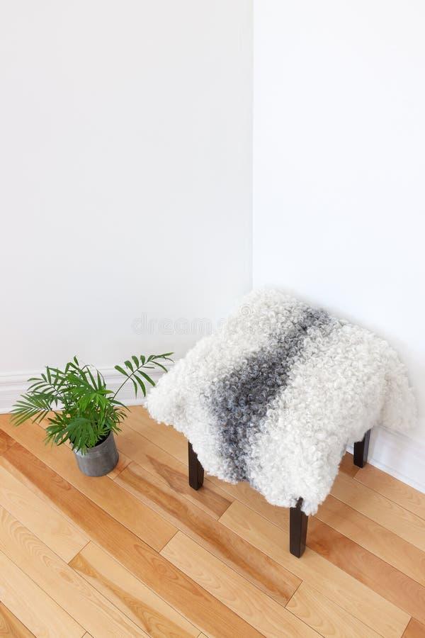 Plante verte et selles couvertes de peau de mouton dans le coin de chambre photo libre de droits