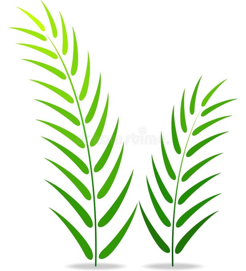 plante verte sur un fond blanc illustration de vecteur illustration du nature horizontal. Black Bedroom Furniture Sets. Home Design Ideas