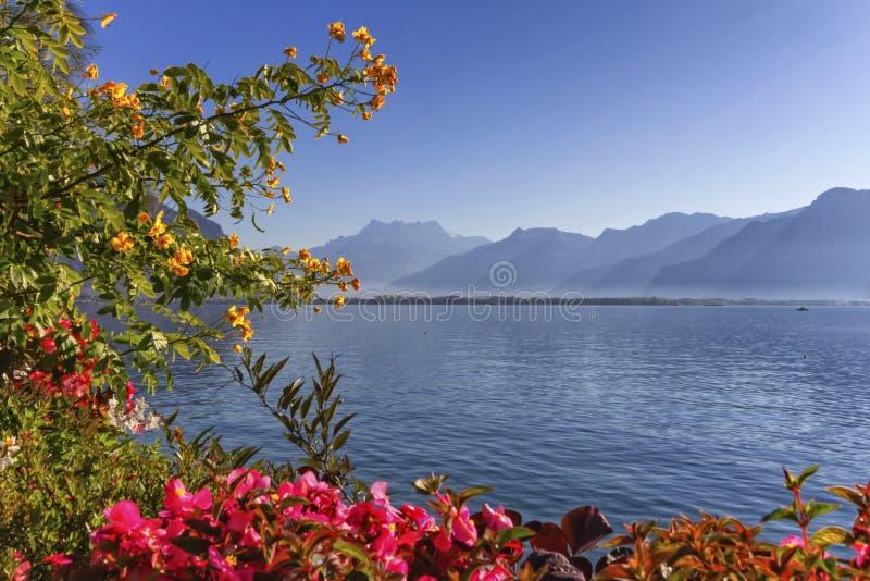 Planten en bloemen naast het meer van Genève Leman in Montreux, Zwitserland royalty-vrije stock foto