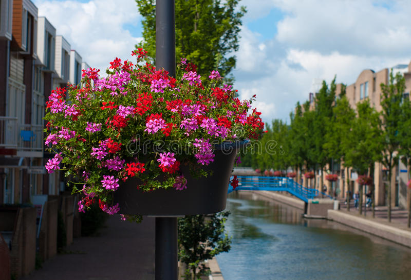 Planter with flowers. Hanging planter with blooming flowers along a canal in Almere, Netherlands stock photography