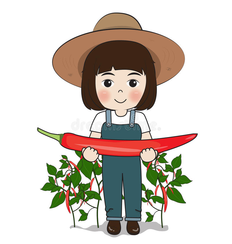 Planter harvest chilies. On white background vector illustration