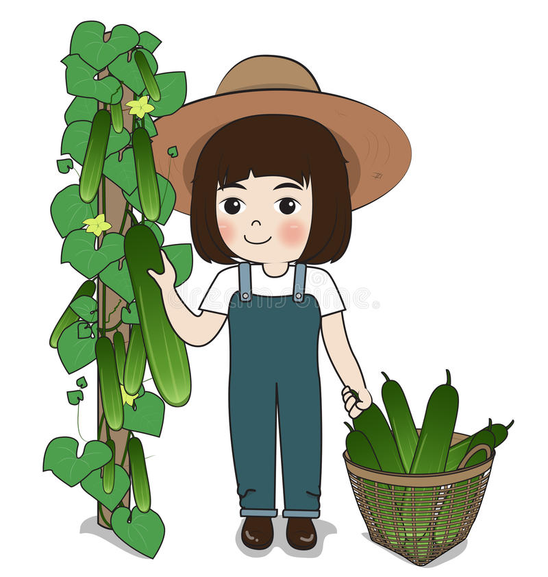 Planter harvest cucumber. S on white background vector illustration