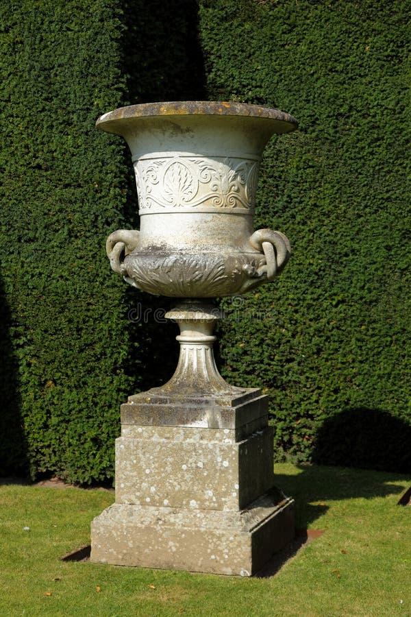 Planter i en trädgård royaltyfri bild