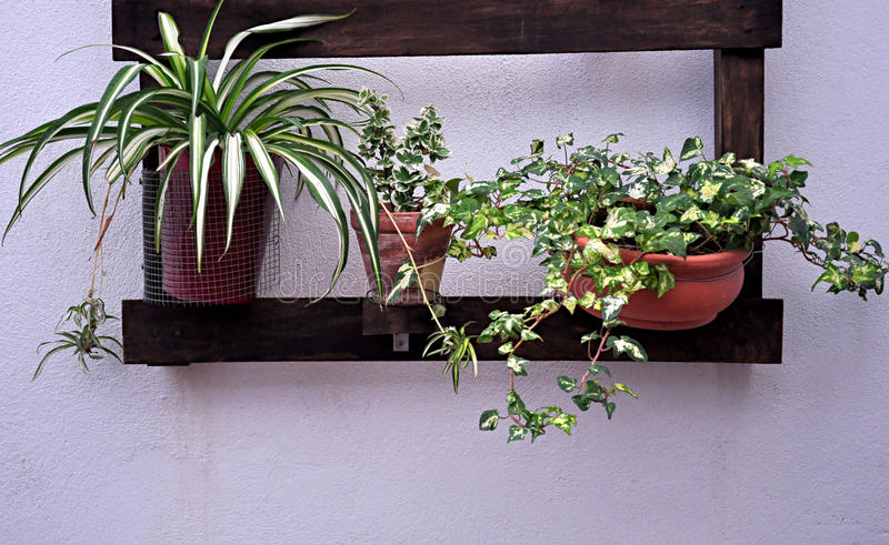 Planter with pots royalty free stock images