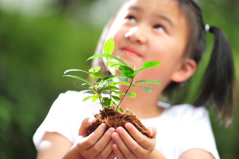 plantera barn royaltyfria bilder