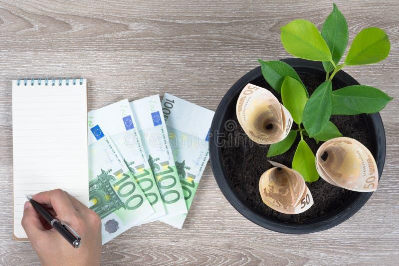 Plantera den euroräkningar och växten i den svarta blomkrukan som förläggas på trä arkivbild