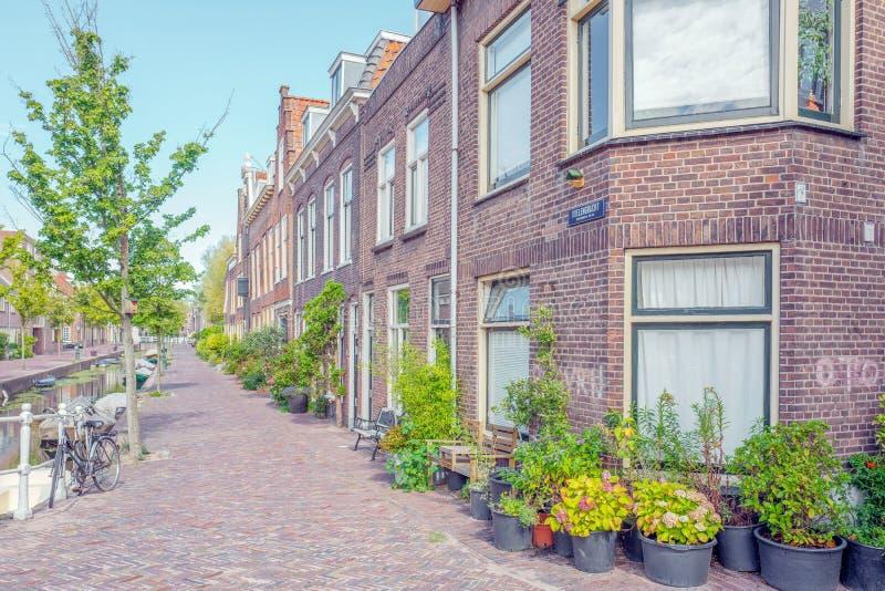 Planters i den smala gatan Doelengracht i Leiden i Nederländerna royaltyfri fotografi