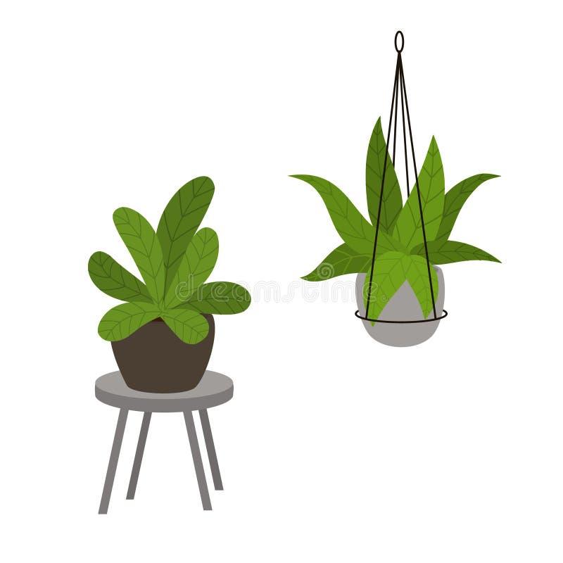 Plantes d'intérieur abstraites de feuillage dans des pots dans les planteurs debout et accrochants décoratifs modernes illustration de vecteur
