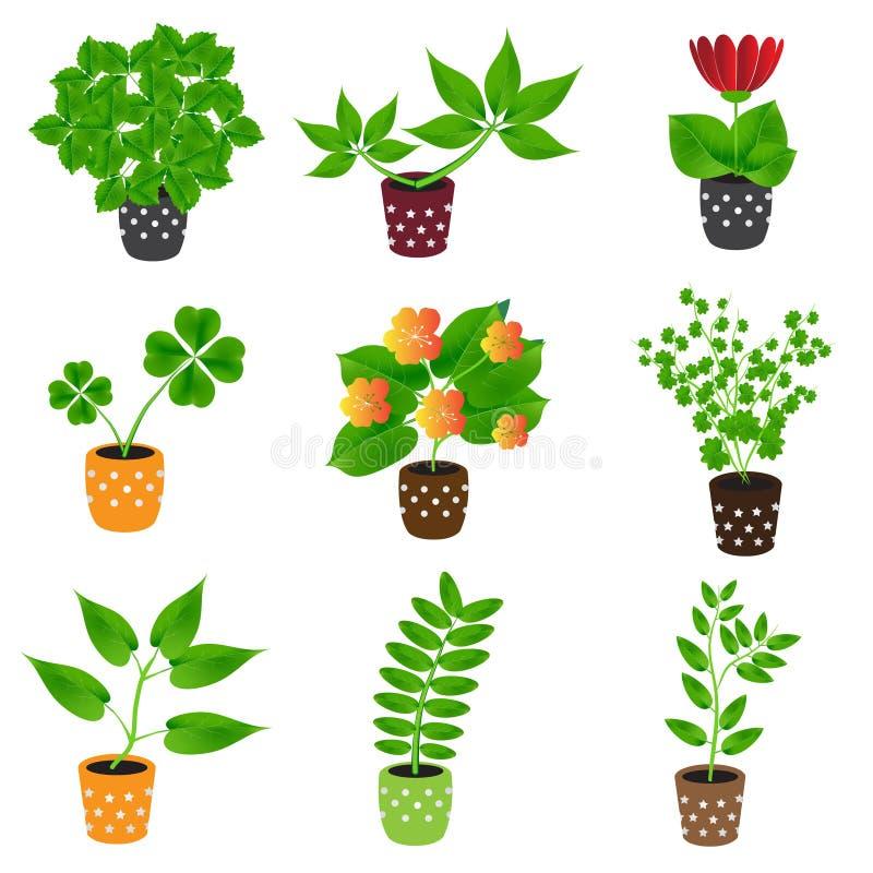 Plantes d'intérieur et fleurs à la maison dans les icônes colorées de pot illustration de vecteur