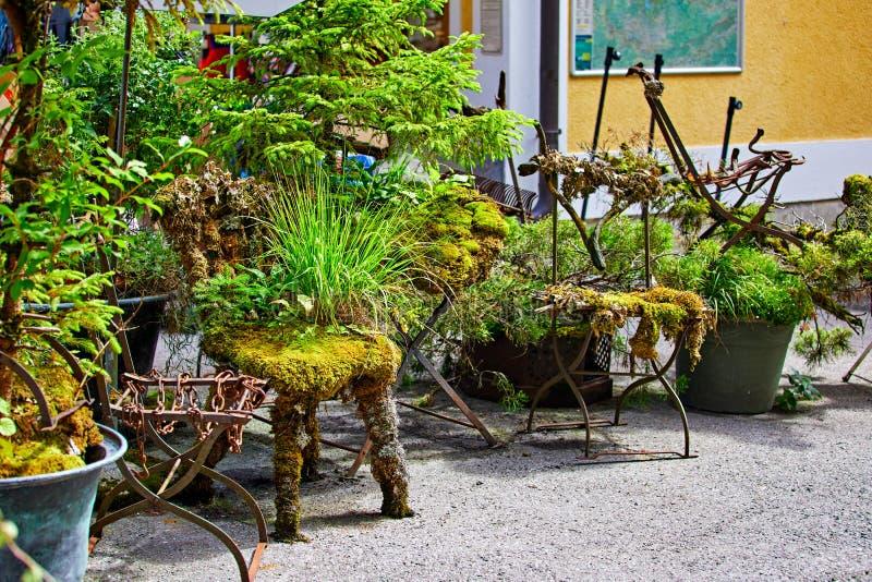 Plantes et fleurs de décorations de vert de Hallstatt Autriche image stock